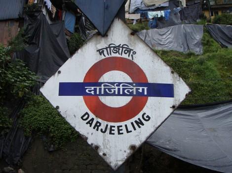 Darjeeling Railway SheepRUs
