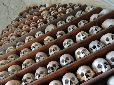 Vaulted wooden shelves filled with skulls in St. Leonard's crypt