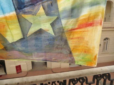 Havana MDLR Flag