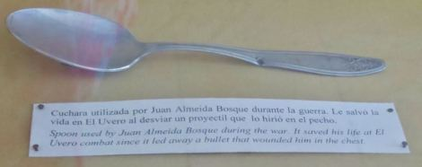 Havana MDLR Spoon
