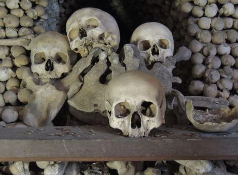 Sedlec Ossuary Skulls and Coins