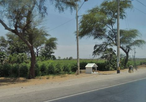 Peru Roadside 5